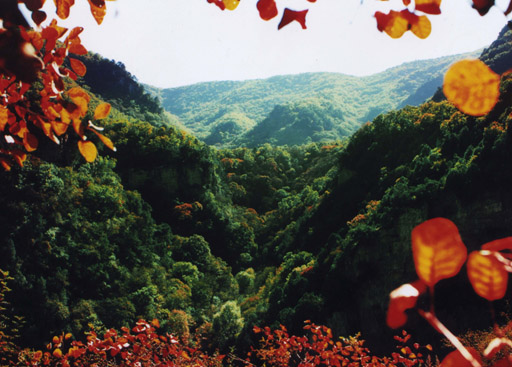 蒲县——峡村峡谷自然风景区_山西省晋绥文化教育发展